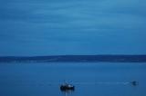 sclboat1_lrg.jpg