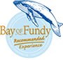 Bay of Fundy Recommended Experience